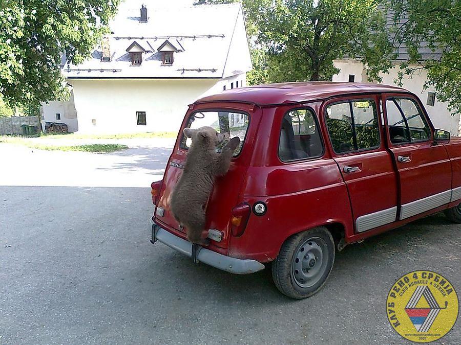 medr4 by Pasha in Klasični Renault 4
