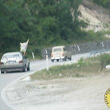 img 3839 by tersonja in Moj Renault 4